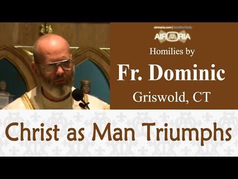 Christ as Man Triumphs - Nov 22 - Homily - Fr Dominic