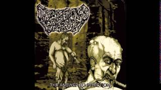Digested Flesh  - The Answer To Infection (Full Album)