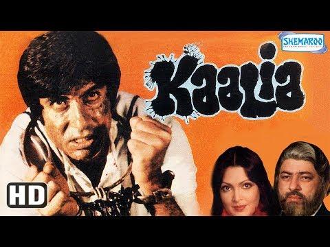 Kaalia (HD) - Amitabh Bachchan | Parveen...