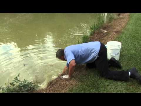 Catfish : Unreeled -behind The Scenes