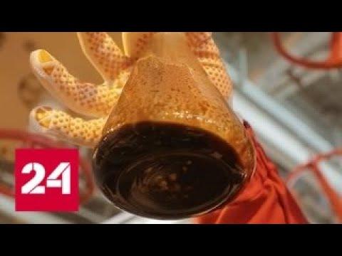 Астраханские берега. Специальный репортаж Антона Борисова - Россия 24