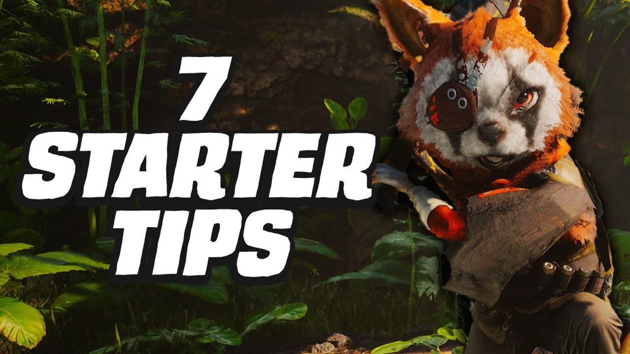 7 tips for getting the most out of Biomutant