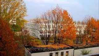 Степногорск. Запорожский край!(, 2015-11-18T09:40:39.000Z)
