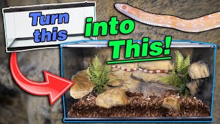Introducing The Snake Discovery Decor Kit!!