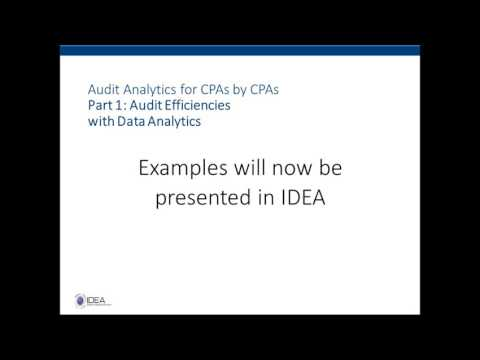 Audit Efficiencies with Data Analytics