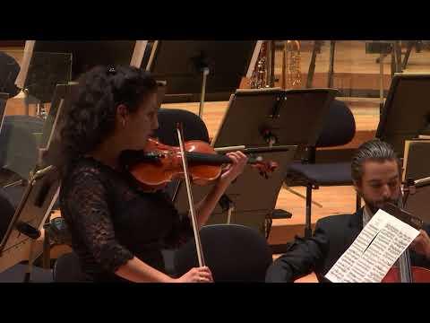 Händel-Halvorsen`s Passacaglia performed by Huayra Duo
