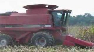 case ih 2388 combine picking corn