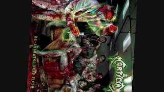 """Mortician """"Claws of Death"""""""