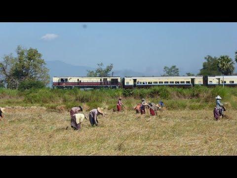 Schienenabenteuer Myanmar, Teil 1. Von Schlangen, Pagoden und Wahrsagern