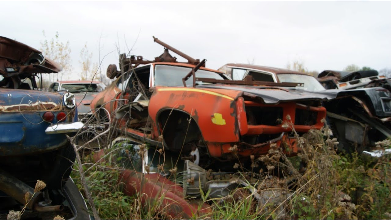 Muscle Car Junkyard Part 2: GTO Judge, Buick GN, 442 and more in ...