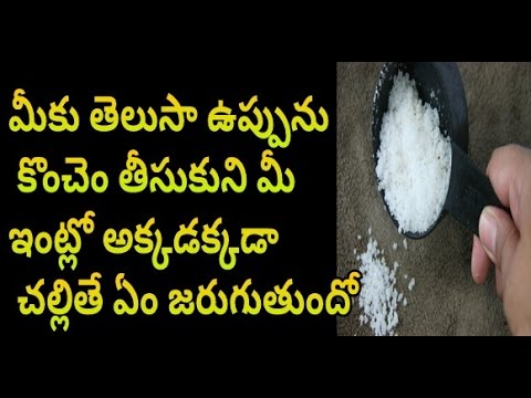 Reasons Why You Need To Spread Salt Around The House | Latest News | News Mantra