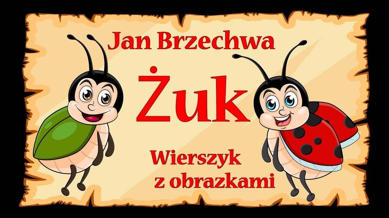 Jan Brzechwa żuk Wiersze Dla Dzieci Edu Dziecko By Edu