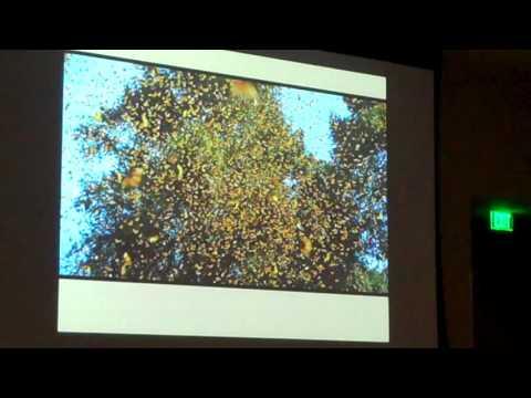 Dr. Chip Taylor - Planting for Pollinators Kick Off Part 1