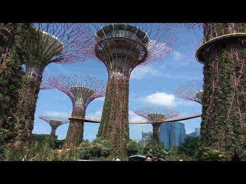 Singapore Garden Festival 2016