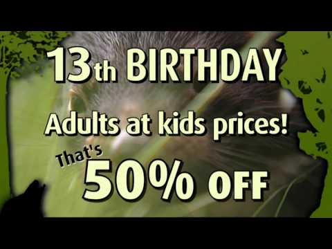 Tasmania Zoo's 13th Birthday