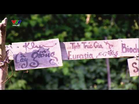 Sức mạnh của tình thương - Power of Love - Tịnh Trúc Gia/EURASIA