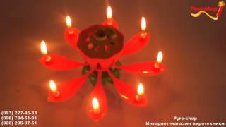Музыкальная свеча, цветок лотоса, маленькая(, 2016-02-18T09:53:02.000Z)