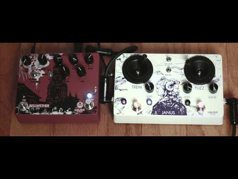 Playing with the Walrus Audio Bellwether and Janus