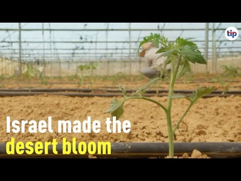 Have you ever heard of Israel's Drip irrigation?