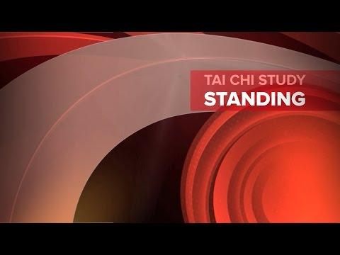Inspirations: Tai Chi Study... Standing
