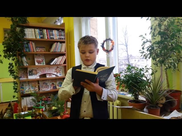 Изображение предпросмотра прочтения – ДаниилТурулин читает произведение «Летняя гроза» В.Я.Брюсова