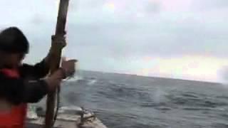 Охоту на китов посчастливилось наблюдать журналистам ''Вестей: Приморья''. Видеорепортаж Ф.Гурко