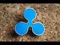 Ripple Announces 5 New Partners, $40 Trillion Crypto Market And Cardano Launching Two Test Nets