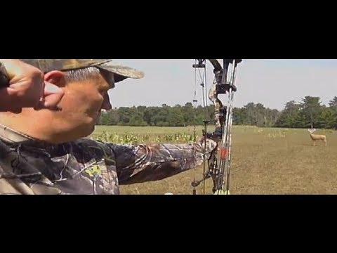 Deer Talk Now: Bowhunting Tips From Bob Robb