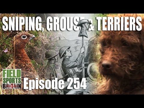 Fieldsports Britain - Sniping, Grouse & Terriers