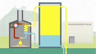 Wie funktioniert die Agro Energie Rigi?