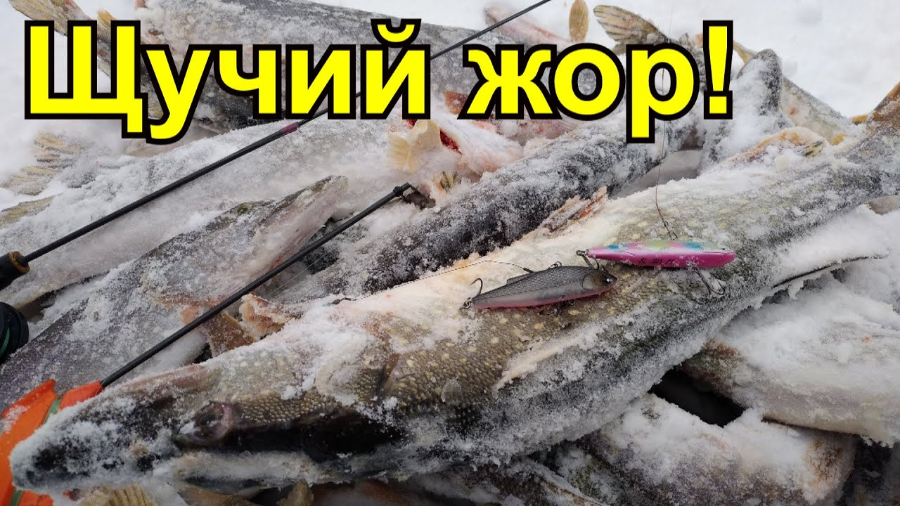 РАТЛИН на щуку. Щука на виб. Зимняя рыбалка 2020