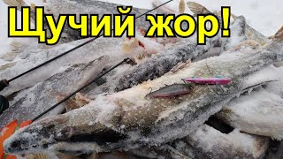 РАТЛИН на щуку Щука на виб Зимняя рыбалка 2020