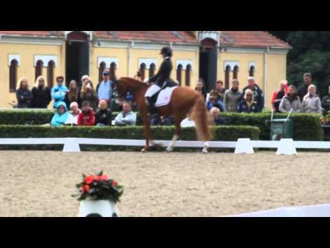 "Ridehesten.com | Nordic Baltic Championships - Victoria Vallentin and ""Not for sale"""