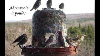Année 2011, mangeoires et accessoires pour oiseaux