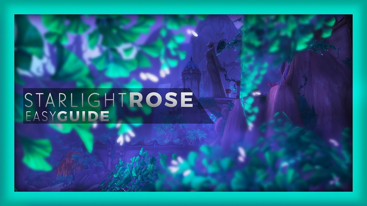 Wow Starlight Rose