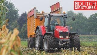Maize silage with a little mud + storm damage - Massey Ferguson 8690 + 8670 - Mais hakselen