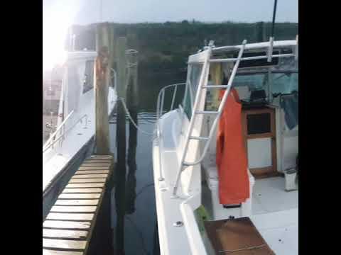 Fish Monger II Charters / APPD Fishing 6.17.17