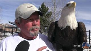 Bald Eagles are a cherished natural resource that through the efforts of organizations like Game and Fish and Liberty Wildlife have been able to recover from endangerment here in AZ. Willow Bend celebrated Bald and Golden Eagles alike and invited us!