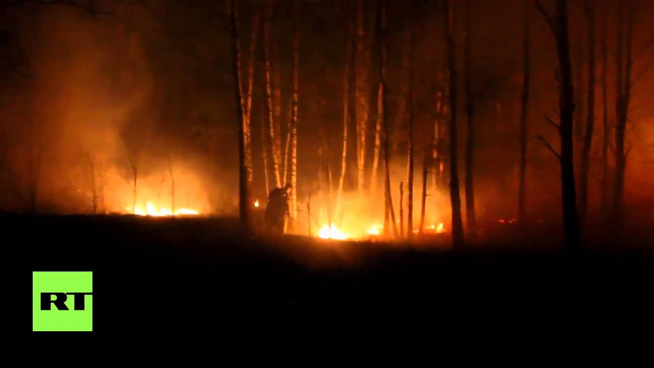 Ukraine continues to battle forest fire near Chernobyl