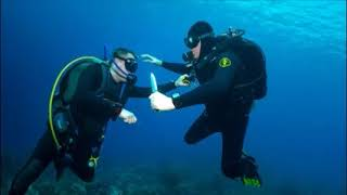 Opie Beats Up a Frenchman Underwater
