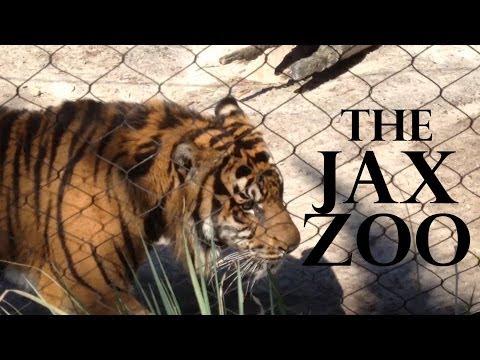 Inside the Jacksonville Zoo