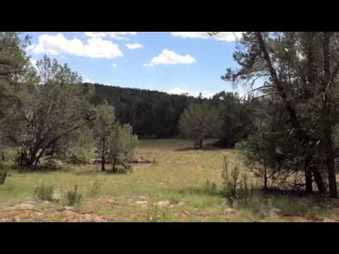 Sierra Verde Ranch Realty- 40 Acre Land For Sale in Northwest Arizona