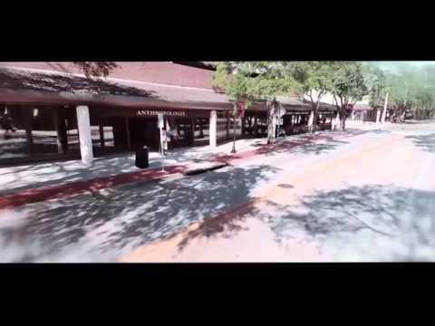 Hyde Park Village - Tampa, FL