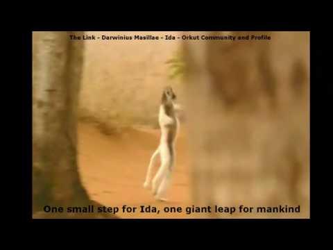 The Link - Darwinius masillae - One small step for Ida