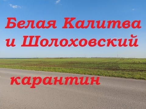 Коронавирус самоизоляция и карантин в Ростовской области с Белая Калитва, поселок Шолоховский,Жирнов
