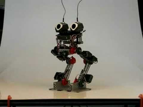 Vex Walking Robot - Model I