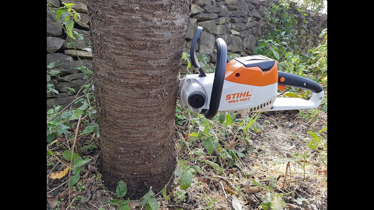 Download STIHL Cordless MSA 140 C-BQ Chainsaw Cutting logs | TEST