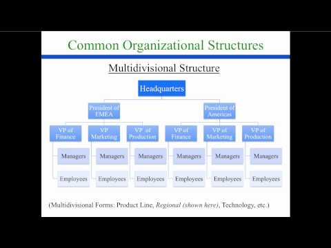 strategic organizational design