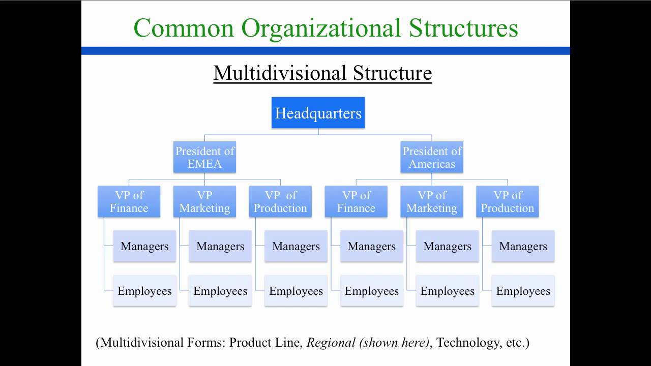 Organizational Design Structure Youtube