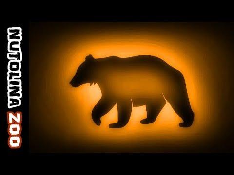 Hedendaags Bär geräusch / Bär brüllt / Verso dell'orso / Beer geluid - YouTube DO-53
